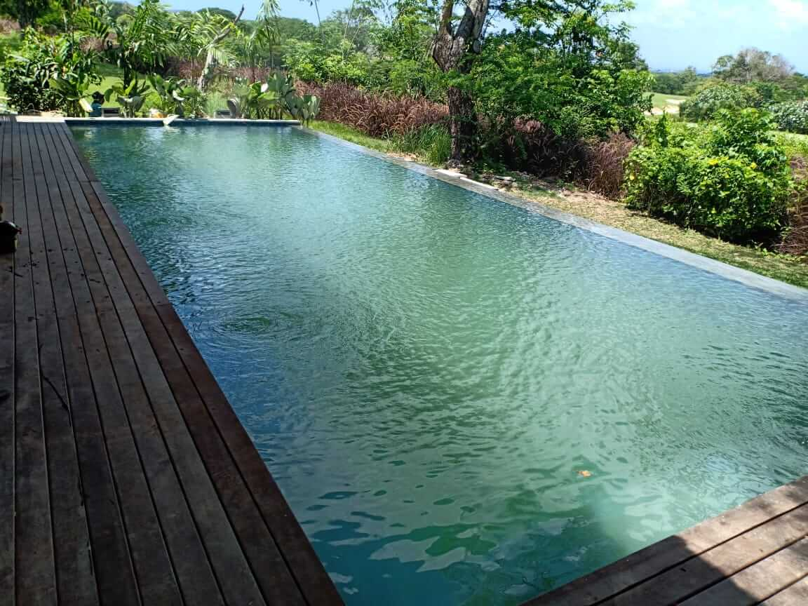 Panduan Murah Membuat Kolam Renang Minimalis Sederhana Contoh kolam renang minimalis